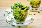 Zielona herbata w ciąży