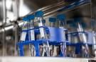 Nowa ustawa o in vitro uderzy w singielki