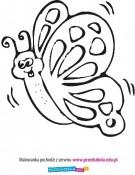 Kolorowanka Motylek