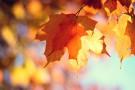 Jesienna wyprawka